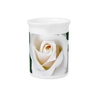 white rosebud pitcher