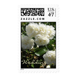 White Roses for a  Wedding Postage