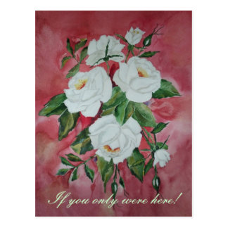 White roses, If you only were here! Postcard