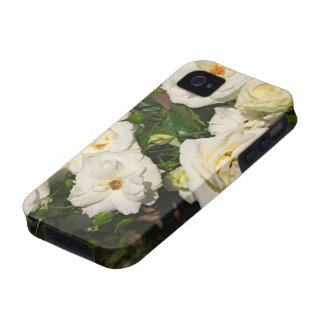 White Roses in Bloom - Flower photography Vibe iPhone 4 Cover