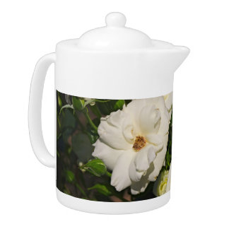 White Roses in Bloom - Flower photography Teapot