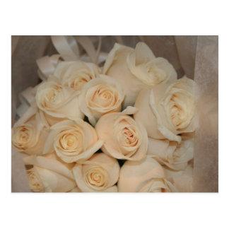 White Roses Postcard