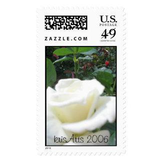white rosey stamp