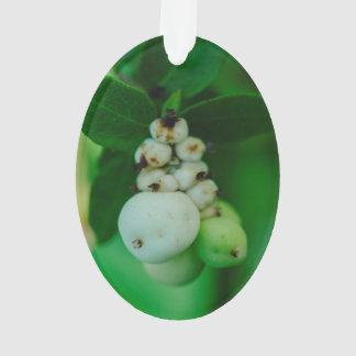 White round plant fruits macro ornament