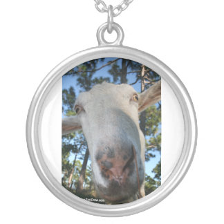 White saanen dairy goat doe nose close up HI Silver Plated Necklace