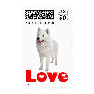 White Samoyed Puppy Dog Red Love Postage