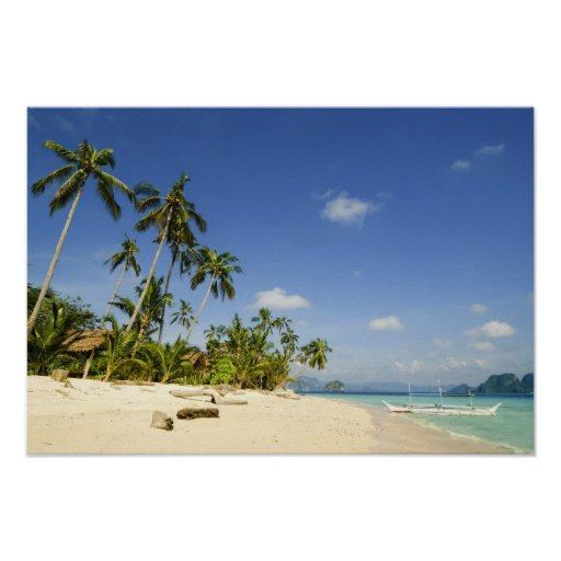 White Sand Beach in Palawan Poster