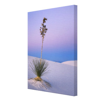 WHITE SANDS NATIONAL MONUMENT, NEW MEXICO. CANVAS PRINT