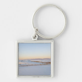 White Sands National Monument, Transverse Dunes 2 Keychain