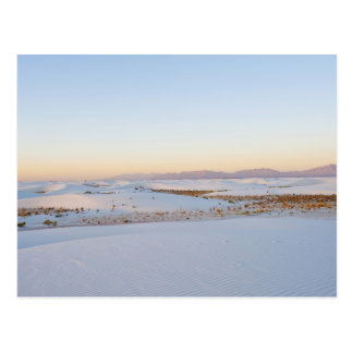 White Sands National Monument, Transverse Dunes 2 Postcard