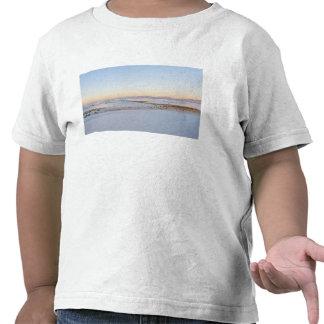 White Sands National Monument, Transverse Dunes 2 Tee Shirt