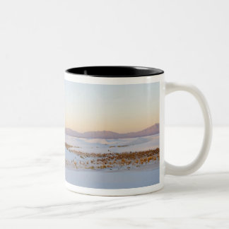 White Sands National Monument, Transverse Dunes 2 Two-Tone Coffee Mug