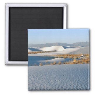 White Sands National Monument, Transverse Dunes 3 2 Inch Square Magnet