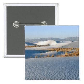 White Sands National Monument, Transverse Dunes 3 Button