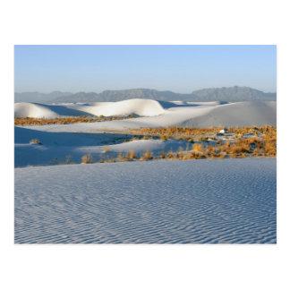 White Sands National Monument, Transverse Dunes 3 Postcard