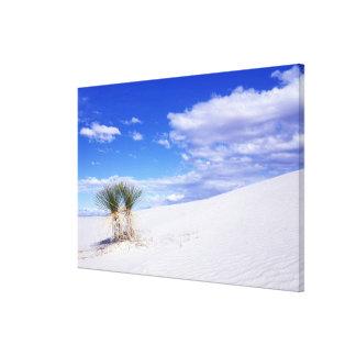 White Sands NM, New Mexico, USA Canvas Print