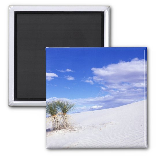 White Sands NM, New Mexico, USA Magnet