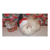 White Santa Pig Card