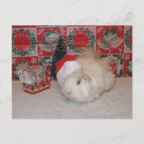 White Santa Pig Holiday Card