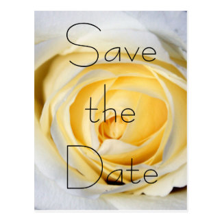 White Save the Date Postcard