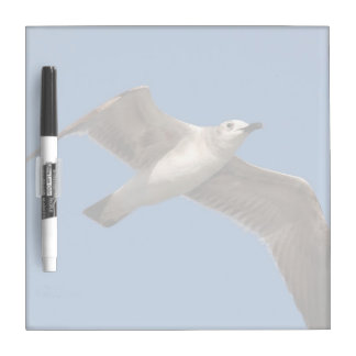 White Seagull Bird Dry Erase Board