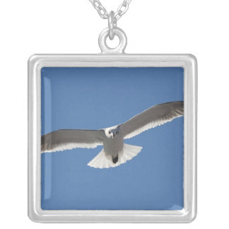White seagull, Necklace
