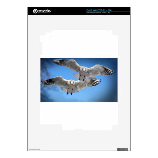 White Seagulls In Flight Decals For The iPad 2