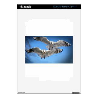 White Seagulls In Flight iPad 3 Skins