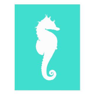 White Seahorse on Turquoise Postcard