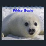 "White Seals! Calendar<br><div class=""desc"">its all about White Seals</div>"