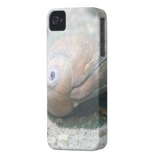 White Seashell iPhone 4 Case-Mate Case