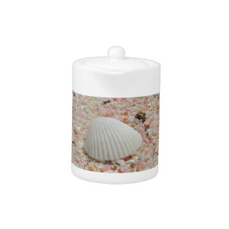 White seashell on Pink Sand Beach