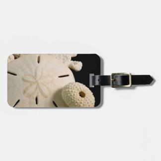 White Seashells And Sand Dollar Bag Tag