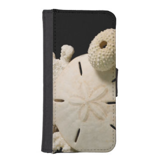 White Seashells And Sand Dollar iPhone SE/5/5s Wallet Case