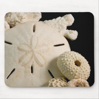 White Seashells And Sand Dollar Mouse Pad