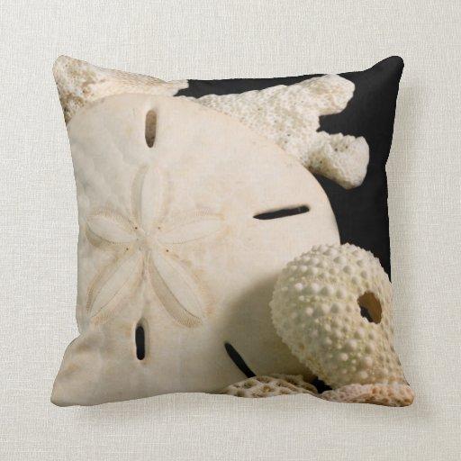 Throw Pillows Under 5 Dollars : White Seashells And Sand Dollar Throw Pillows Zazzle