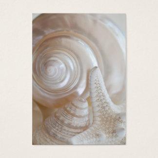 White Seashells Starfish Tropical Beach Sea Shells Business Card