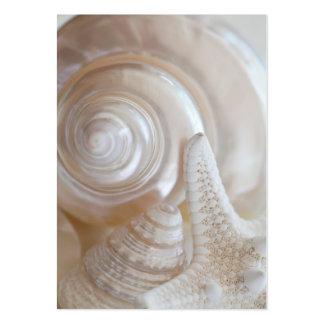 White Seashells Starfish Tropical Beach Sea Shells Large Business Card