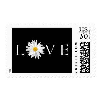 White Shasta Daisy Flower Love Postage