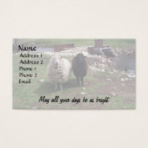 White Sheep Black Sheep Business Card