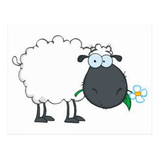 White Sheep Cartoon Character Eating A Flower Postcard