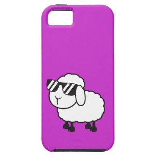 White Sheep in Sunglasses Cartoon iPhone SE/5/5s Case