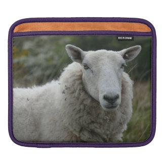 White Sheep iPad Sleeves
