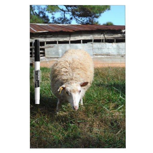 White Sheep on the Farm Dry-Erase Whiteboards