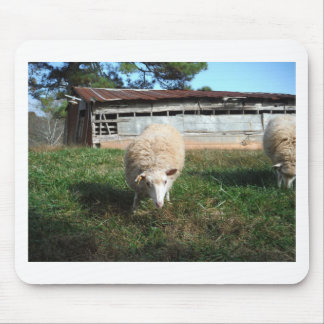 White Sheep on the Farm Mouse Pads