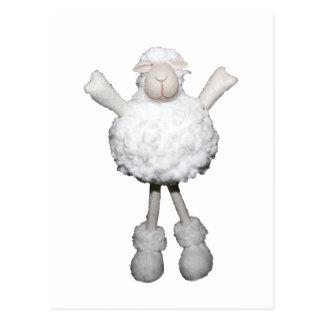 White Sheep Postcard