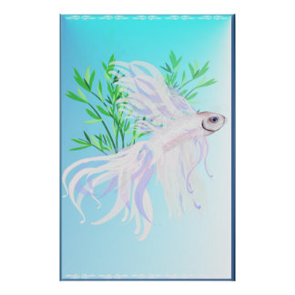White Siamese Fighting Fish large Poster