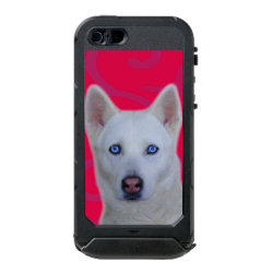 Incipio Feather Shine iPhone 5/5s Case with Siberian Husky Phone Cases design