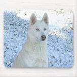 White Siberian Husky mousepad