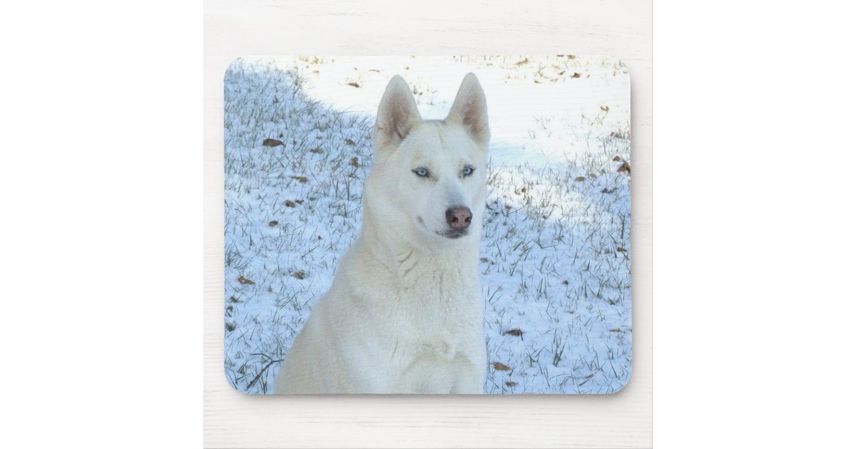 White Siberian Husky Mousepad Zazzle Com